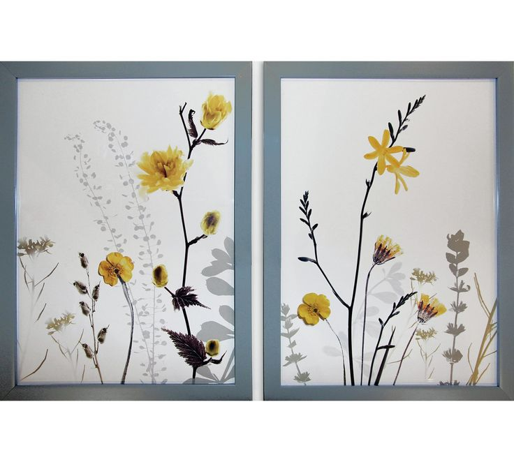 Buy Collection Set of 2 Floral Framed Prints - Grey & Yellow at Argos.co.uk, visit Argos.co.uk to shop online for Pictures and wall art, Wall art, pictures and photo frames, Home furnishings, Home and garden