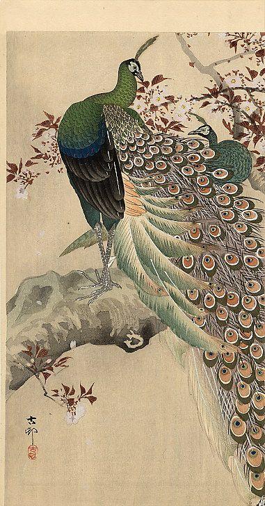 Охара Косон. Птицы 2