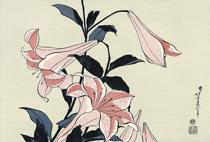 Hokusai/ Lilies, from an untitled Oban series of Flower and Bird