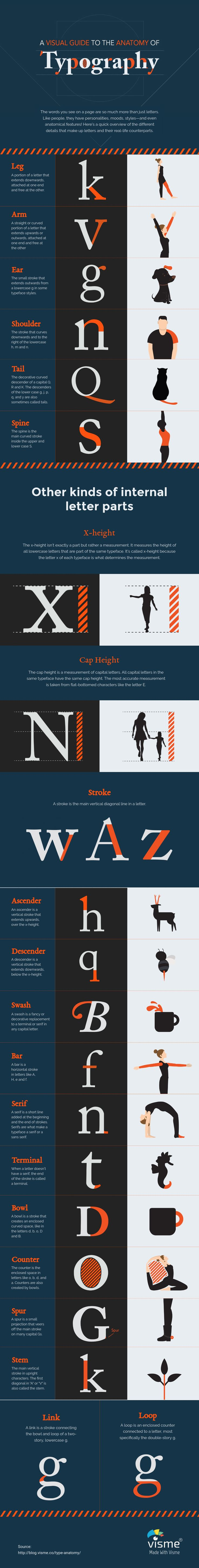 Type Anatomy A-Visual-Guide-to-the-Anatomy-of-Typography-Infographic  http://blog.visme.co/type-anatomy/