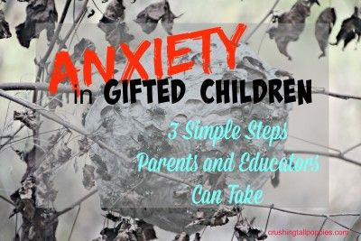 anxiet and the gifted child pdf