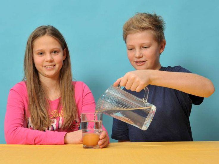 Experiment: Auftrieb für Eier