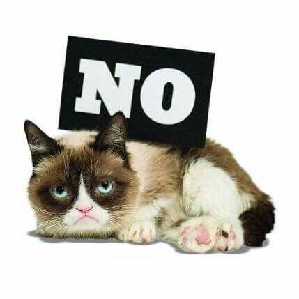 Lovvvvvve me some Grumpy Cat! #TeamGrumpy!! | GRUMPY CAT ...