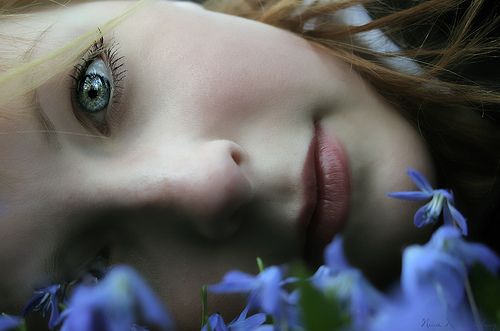 in field: Blue Flowers, Eye Mirror, Dreamy Eye, Photo Shared, Eye Eye, Photography Captiv, Beautiful Eye, Fields, Thr Eye