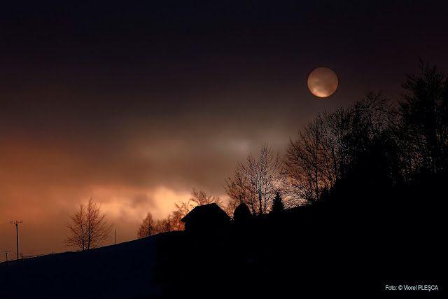 Viorel Plesca: LOW LIGHT