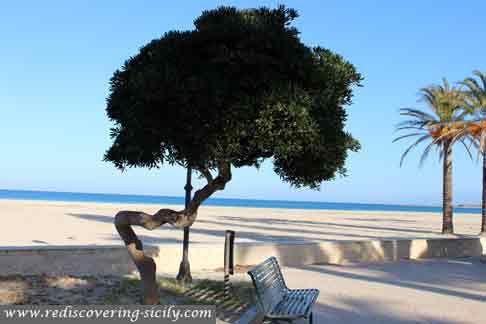 San Vito lo Capo - umbrella next to the beach