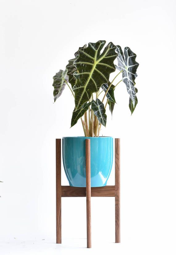 Mid Century Modern Plant Stand Walnut