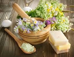 Herbal shop for natural herbal products, herbal shop for natural herbal medicine & herbal shop for traditional herbal medicine http://www.naturalhealthystore.com