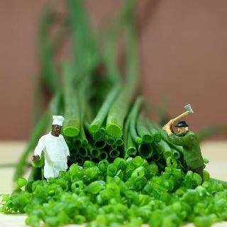 taming the wild scallion- cooking with kids- hilarious, those army men do end up EVERYWHERE