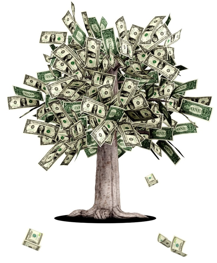 Money does grow on trees. Or at least this is how I feel when planning a wedding...