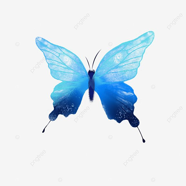 Watercolor Blue Butterfly Dream Watercolor Butterfly Butterfly Clipart Colorful Butterfly Butterfly Decoration Png Transparent Clipart Image And Psd File For Butterfly Watercolor Butterfly Illustration Blue Butterfly