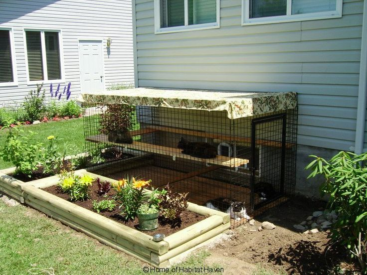 catio cat house outdoor pinterest window for dogs