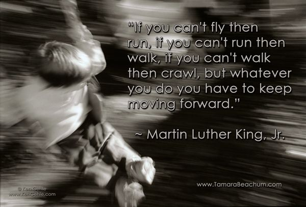 """""""If you can't fly then run, if you can't run then walk, if you can't walk then crawl, but whatever you do you have to keep moving forward."""" ~ Martin Luther King, Jr"""