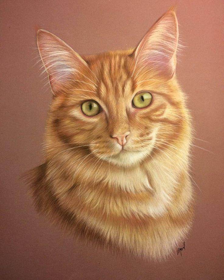 конструкции картинки рыжего кота с зелеными глазами мультяшного костел