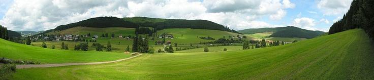 Parc naturel de la Forêt-Noire
