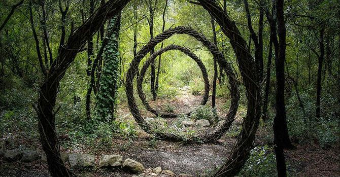 [Image] | Artist Spends Year Alone In Forest Creating Organic Works... - TIMEWHEEL
