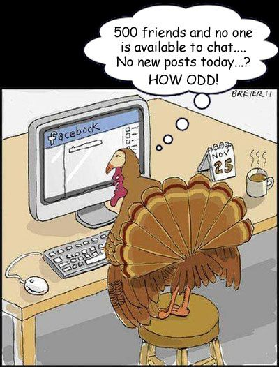 Turkey can't find any of his 500 turkey friends on Facebook all Thanksgiving Day - turkey humor