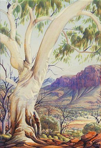 Albert Namatjira  ...?? a sensual tree ? ? ?