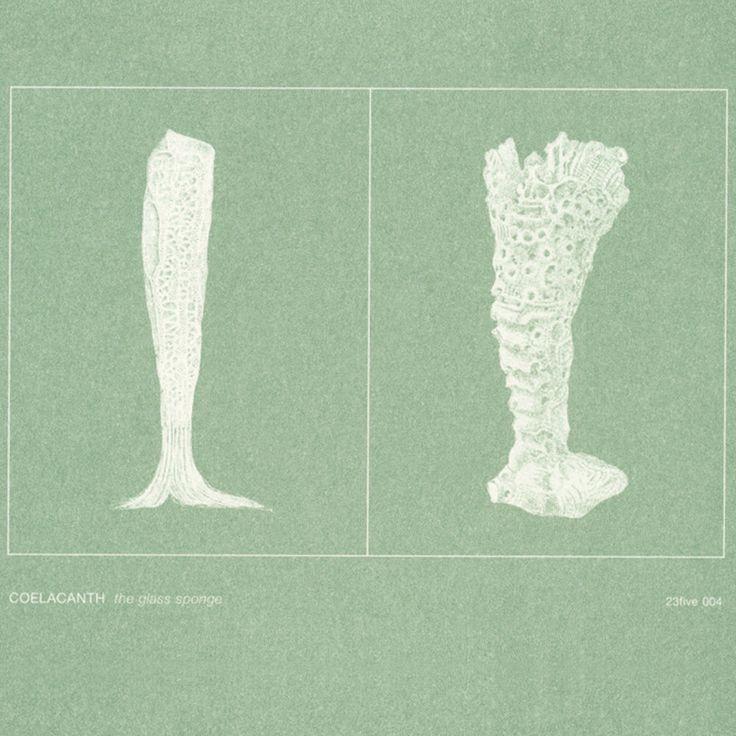 Coelacanth | The Glass Sponge (23five, 2003)