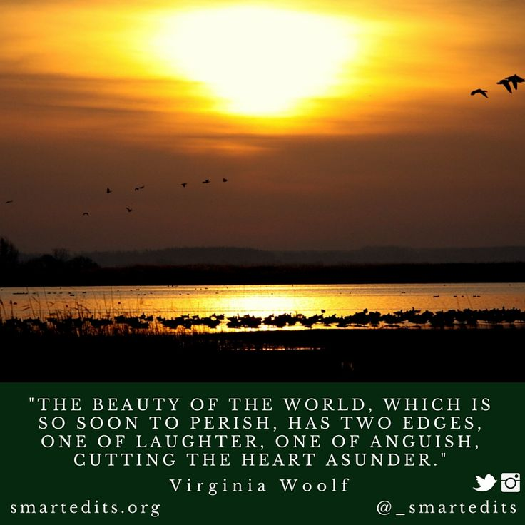 """""""The beauty of the world, which is soon to perish, has two edges, one of laughter, one of anguish, cutting the heart asunder."""" - #VirginiaWoolf  #QOTD #LiteraryQuotes #365Quotes #DailyQuotes #Literature #Reading #Books #WordsofWisdom #WiseWords #BookLove #Book #Novel #Authors #Writer #Inspiration #DailyInspiration #BookNerd #Bookworm #LifeQuotes #LitQuotes"""