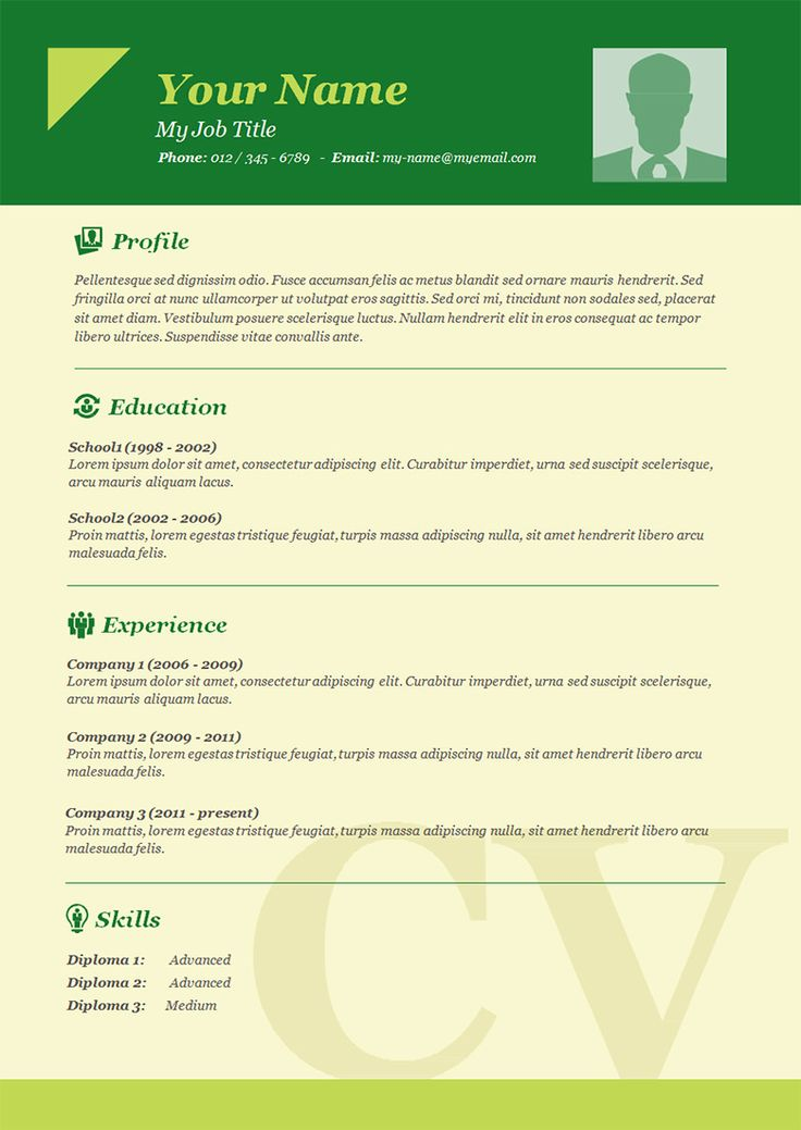 Best 25+ Basic Resume Format Ideas On Pinterest | Best Cv