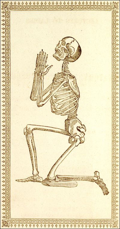 116 best Historical Anatomy images by National Library of Medicine ...