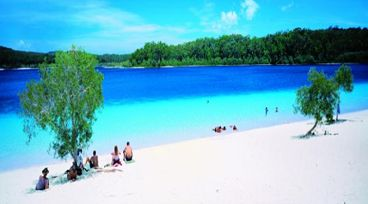 8. Drive a 4WD on the world's largest sand island - Fraser Island!