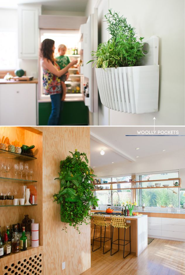 Woolly Pockets hold indoor herb gardens!! perfect! | Pure Mamas