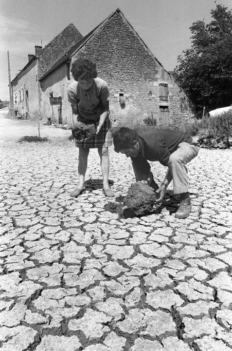 VIDEOS. LES ÉTÉS INOUBLIABLES. 1976, La canicule étouffe la France