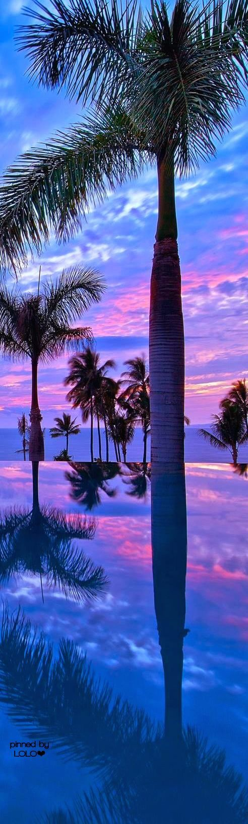 Beautiful Hawaii...ANDAZ MAUI AT WAILEA RESORT | LOLO❤︎