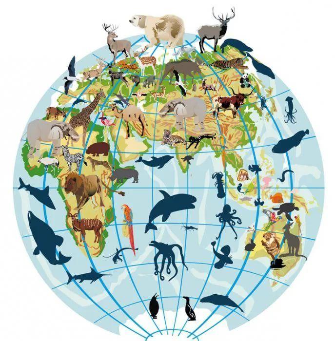 Планета с животными картинки
