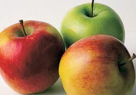Domácí jablečný ocet | . . . 365 věcí, které si můžete udělat doma sami