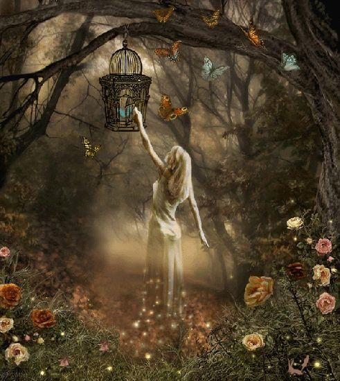 El Arpa Mágica: Metafísica para Todos