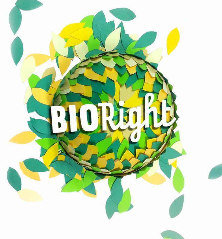 Een van de eerste handgemaakt creatieve voorstellen voor de identiteit voor het biologische schoonmaakmiddel Bioright.