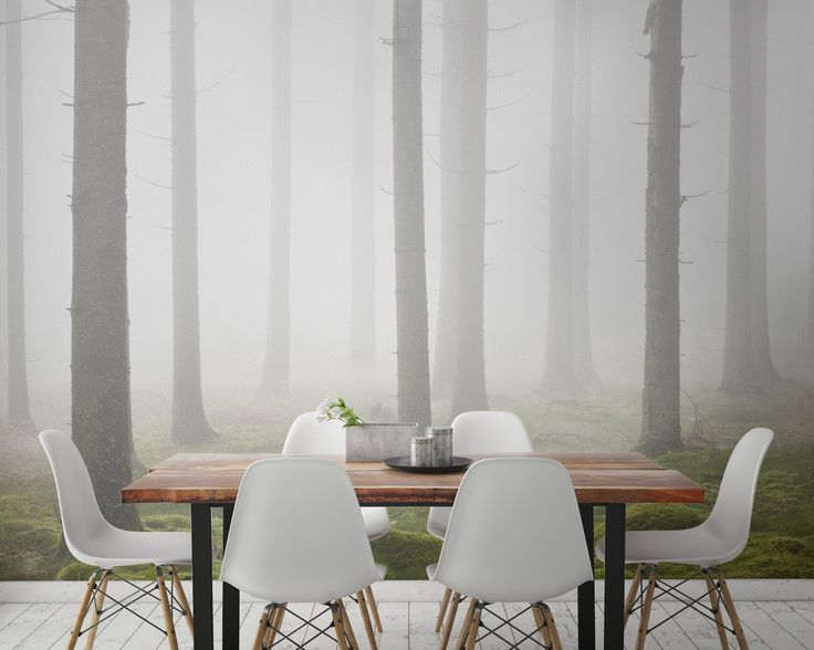 Misty Traditional Forest