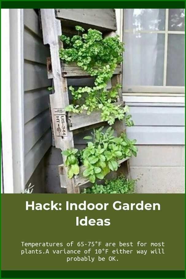 Tips To Help You An Improved Gardener Indoor Garden Ideas