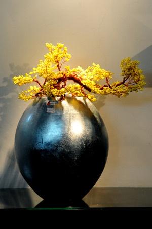bonsai art #bonsai: Acorn Squashes