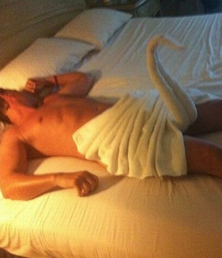Hotel Surprised Me with Towel Folded Like a Swan with a Long Neck Hunk in Bed  ---- best hilarious jokes funny pictures walmart humor fail