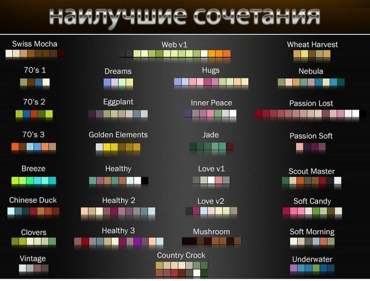 сочетание цветов в одежде таблица коричневый: 17 тыс изображений найдено в Яндекс.Картинках