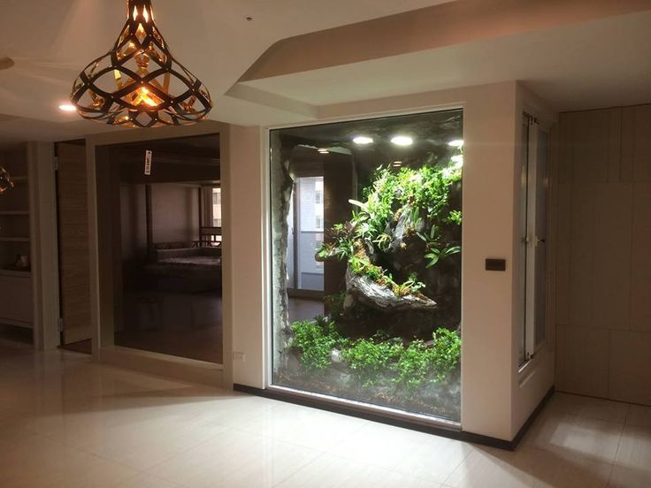 Huge terrarium - come on, how cool would this be?