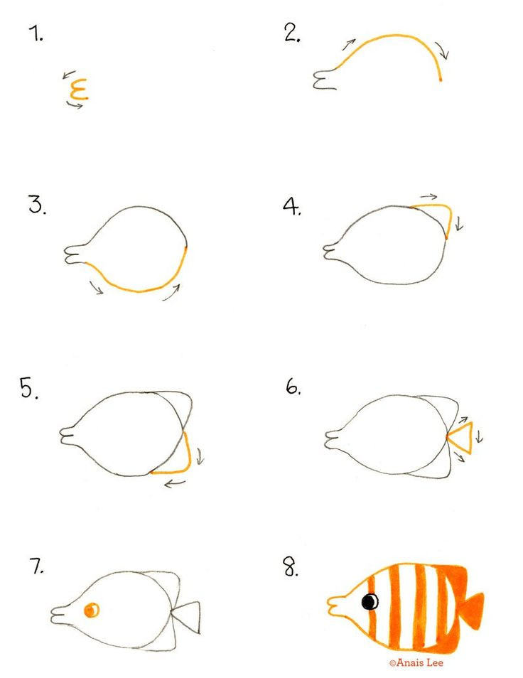 How to draw a tropical fish by anais lee lunchtime for Easy aquarium fish