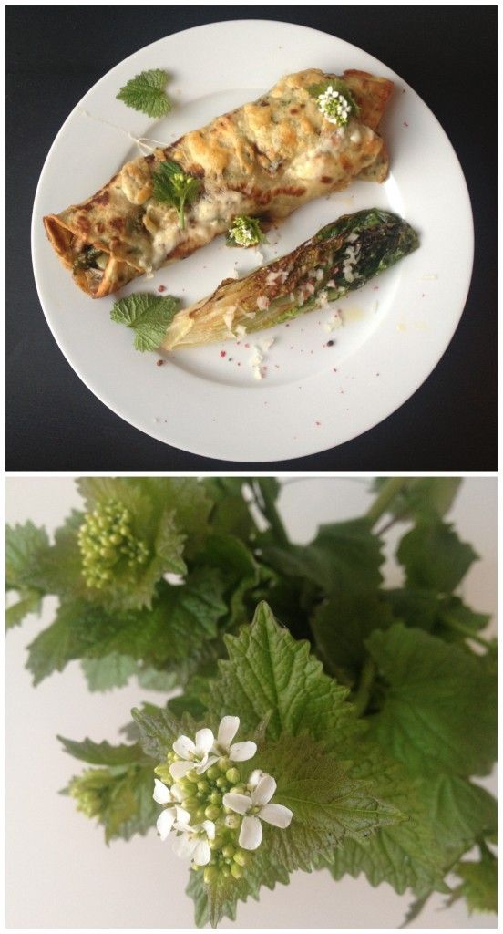 Recipe is in Danish, but it appears to be an asparagus, mushroom and leek crepe garnished with garlic mustard