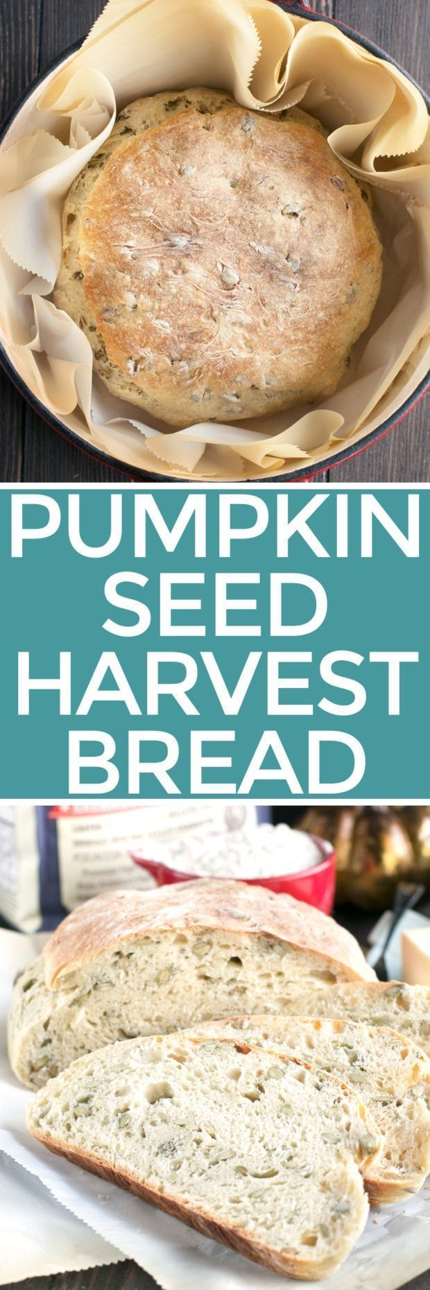 Harvest Pumpkin Seed Bread is the golden brown, crusty, crunchy artisanal bread you've been dying to eat and too afraid to make. However you won't believe how easy peasy this bread is to make! In a few simple steps, and with the help of my favorite bread flour, your are going to be making this bread all season long! Harvest Pumpkin Seed Bread   cakenknife.com #artisanbread #recipe