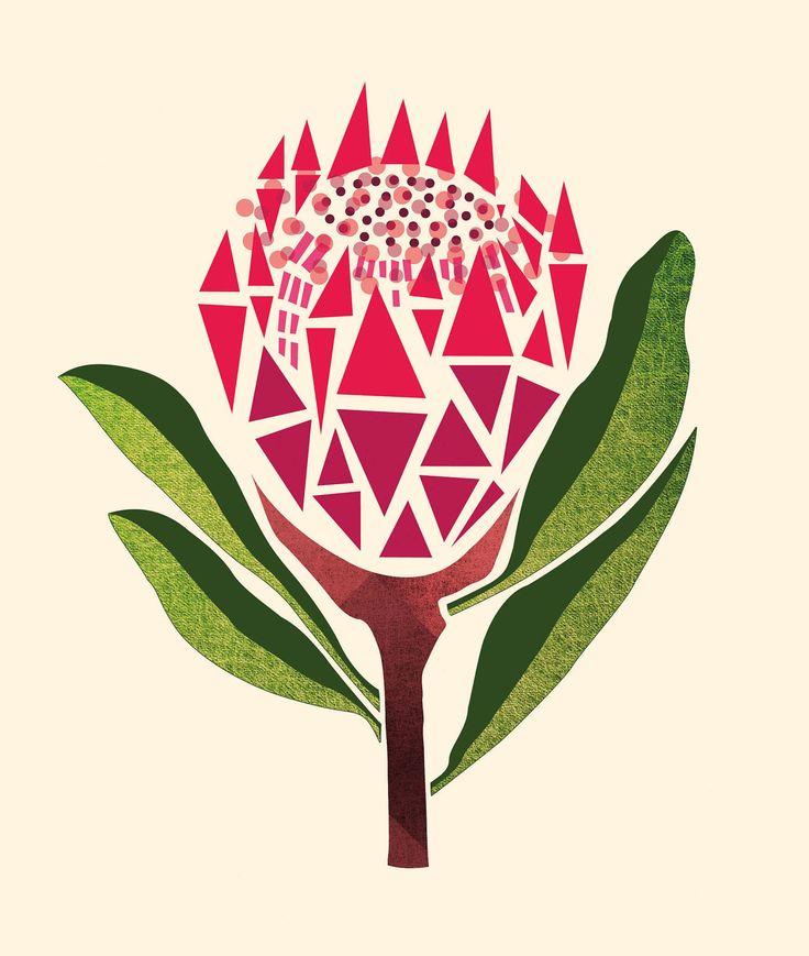 'Pretty Proteas' Cushion cover - Utique | the online gift boutique