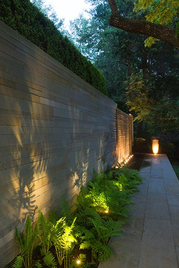 STEPHEN STIMSON ASSOCIATES | WOODLAND RESIDENCE lighting the plants, beautiful shadow on the wall.