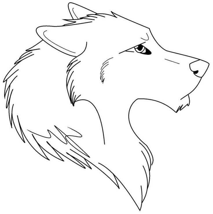 Coloring Page Wolf Face Coloring