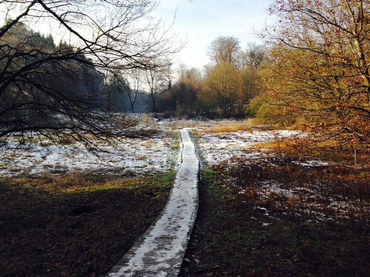 Laufend gebloggt: NK - Mühlental - Sebastian-Kneipp-Weg - Galgenberg...