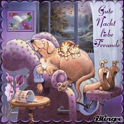 Gute Nacht, liebe Freunde