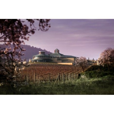 Visita Bodegas Vivanco + Vino personalizado