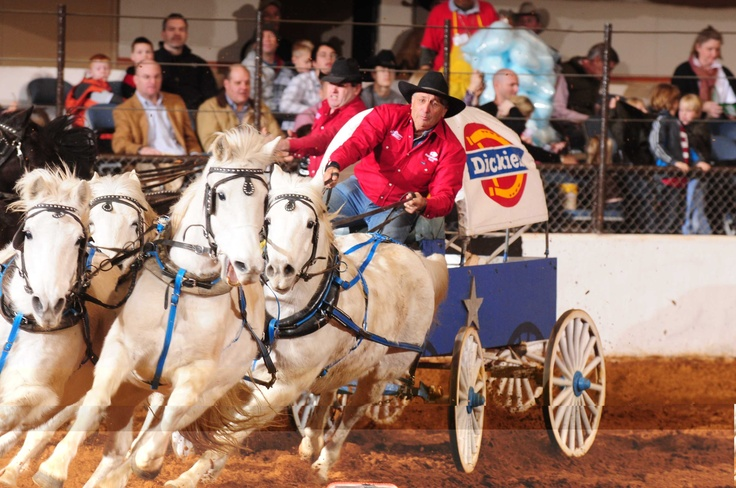 83 Best Fort Worth Stock Show Amp Rodeo Images On Pinterest